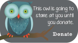 This owl is staring at you. Donate